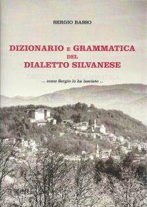 Copertina Dizionario 2013