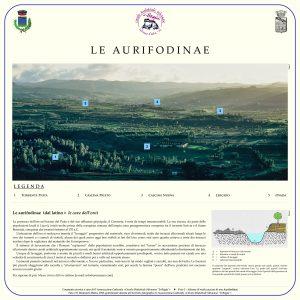 Aurifodinae